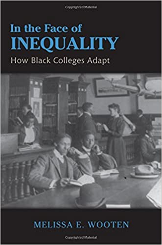 In The Face Of Inequality - Melissa E Wooten